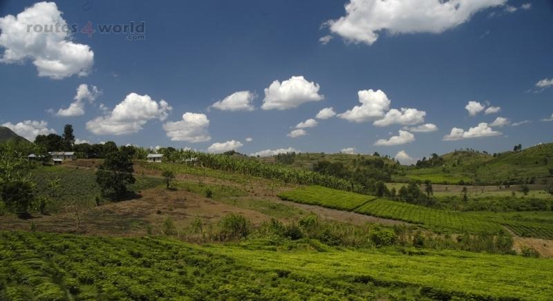 Viaje Uganda17 (Copiar)