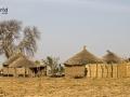 Raid Baobab 2016 - Routes4world - Mauritania - Senegal - Guinea Conakry - Bissau - Gambia (29)