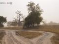 Viaje Senegal-Mauritania24