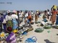 Viaje Senegal-Mauritania65