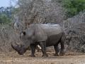 Viaje Surafrica 065