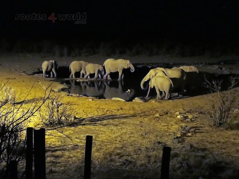 Viaje Namibia 16 197