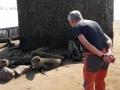 Viaje Namibia 16 074