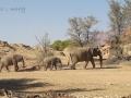 Viaje Namibia 16 099