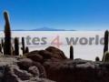 Viaje-Bolivia-13
