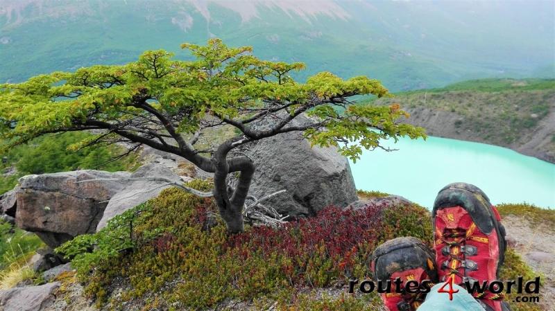 Viaje Patagonia (4)