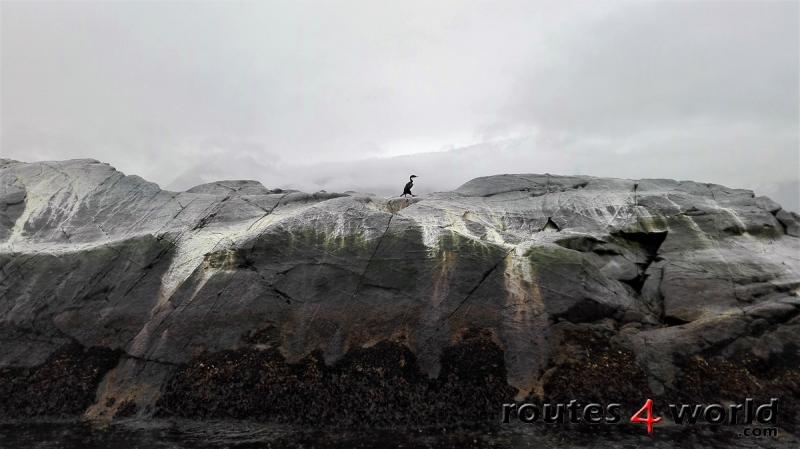 Viaje Patagonia (40)