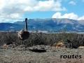 Viaje Patagonia (63)