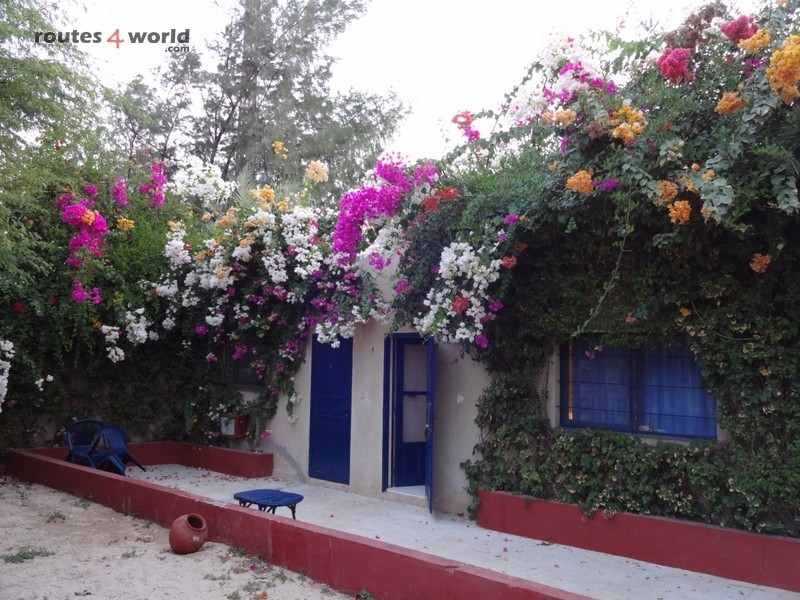 Raid Baobab 2016 - Routes4world - Mauritania - Senegal - Guinea Conakry - Bissau - Gambia (20)