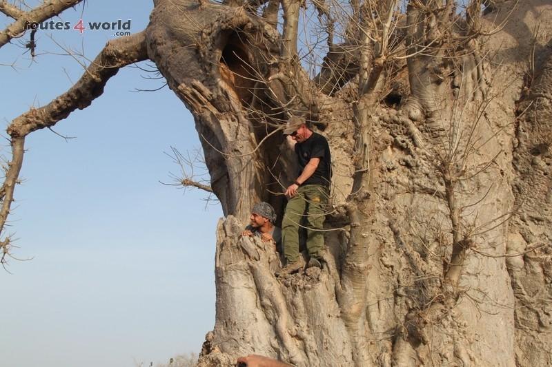 Raid Baobab 2016 - Routes4world - Mauritania - Senegal - Guinea Conakry - Bissau - Gambia (26)