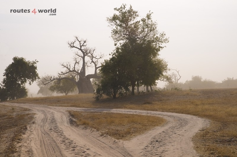 Raid Baobab 2016 - Routes4world - Mauritania - Senegal - Guinea Conakry - Bissau - Gambia (32)