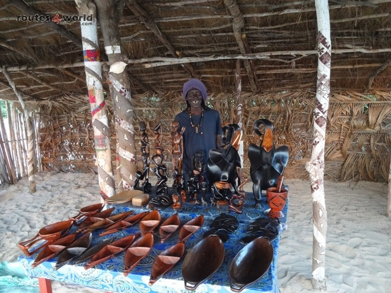Raid Baobab 2016 - Routes4world - Mauritania - Senegal - Guinea Conakry - Bissau - Gambia (59)