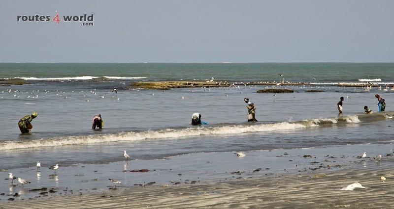 Raid Baobab 2016 - Routes4world - Mauritania - Senegal - Guinea Conakry - Bissau - Gambia (70)