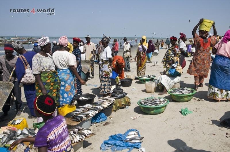 Raid Baobab 2016 - Routes4world - Mauritania - Senegal - Guinea Conakry - Bissau - Gambia (73)