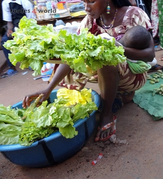 Raid Baobab 2016 - Routes4world - Mauritania - Senegal - Guinea Conakry - Bissau - Gambia (83)