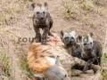 Fotos-Sudafrica-Swazilandia-Lesotho-R4W-19
