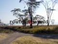 Fotos-Tanzania-zanzibar-14