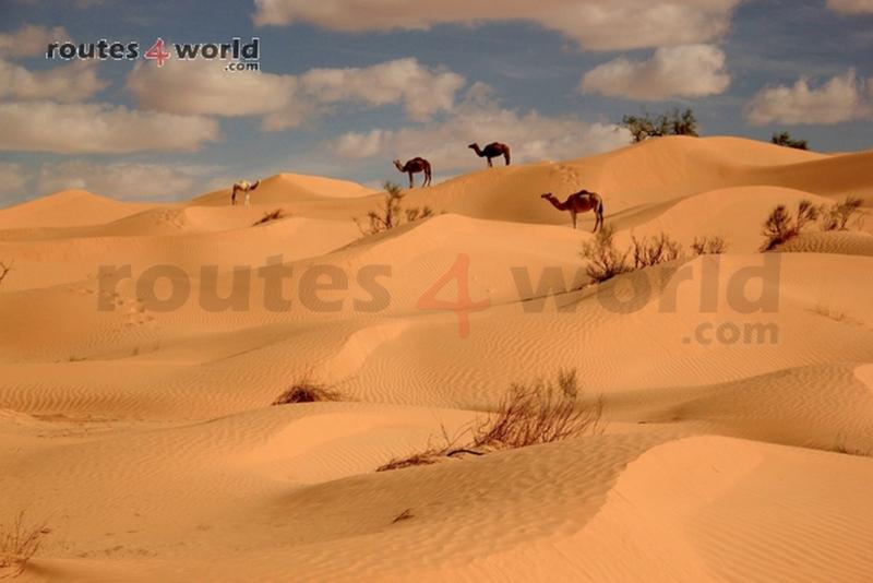 Tunez 4x4 web-Routes4world (40)