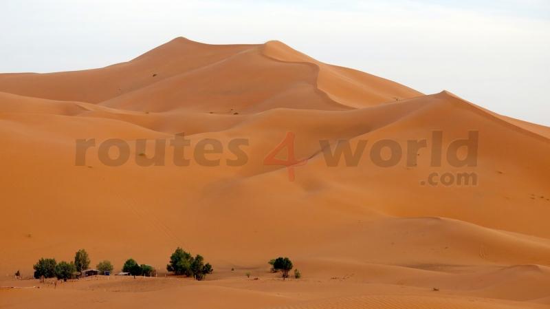 Fotos Marruecos -R4W (11)