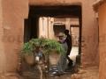 Fotos Marruecos -R4W (15)