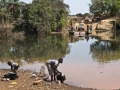 Viaje Senegal-Mauritania49