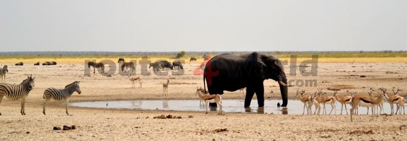 Fotos Namibia Web-R4W (16)