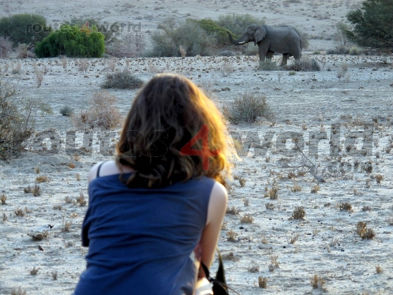 Fotos Namibia Web-R4W (58-1) (3)