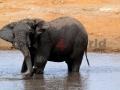 Fotos Namibia Web-R4W (11)