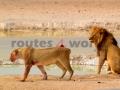Fotos Namibia Web-R4W (18)