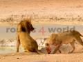 Fotos Namibia Web-R4W (2)