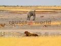 Fotos Namibia Web-R4W (26)