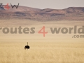 Fotos Namibia Web-R4W (42)