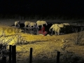 Fotos Namibia Web-R4W (50)