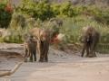 Fotos Namibia Web-R4W (54)