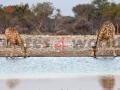 Fotos Namibia Web-R4W (57)