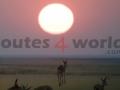 Fotos Namibia Web-R4W (59)
