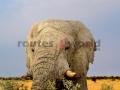 Fotos Namibia Web-R4W (8)