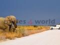 Fotos Namibia Web-R4W (9)
