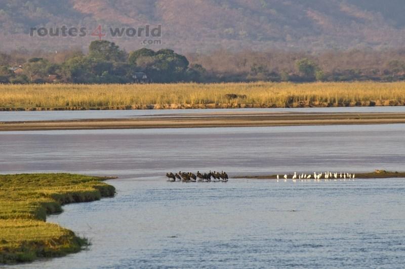 Viaje Surafrica 046