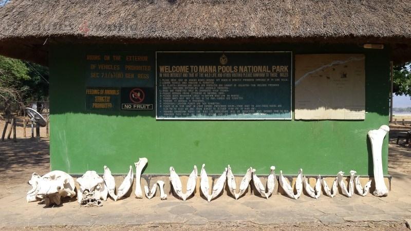 Viaje Surafrica 054