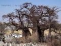 Viaje Surafrica 004