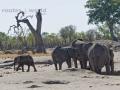 Viaje Surafrica 012