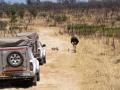 Viaje Surafrica 015
