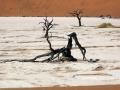 Viaje Namibia 16 021