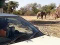 Viaje Namibia 16 100