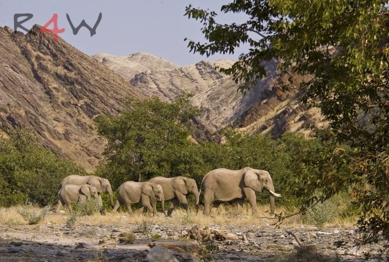 Viaje Namibia31
