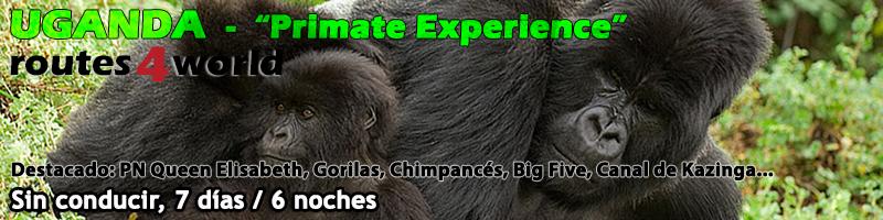 Viaje Uganda 7 dias Primate experience